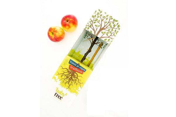 Baby-Tree-Apple