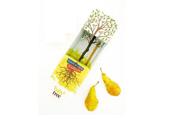 Baby-Tree-Pear-1