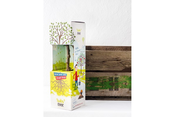 Baby-Tree-with-fruit-box